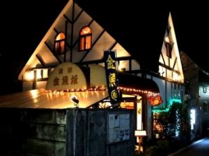 金魚坂夜20110406155852