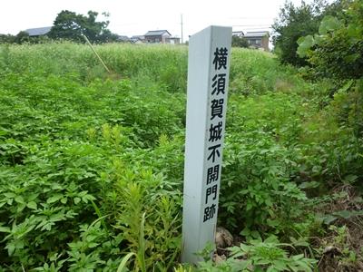 横須賀城20