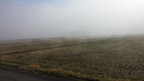 濃霧20150402_075819