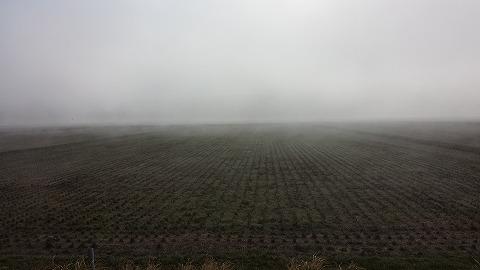 濃霧20150402_075857
