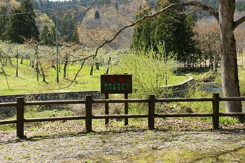 南外不動の滝公園DSC04049