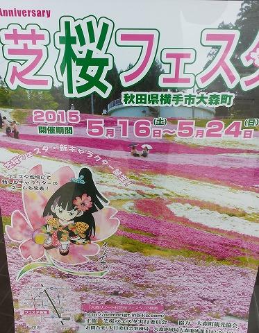 芝桜フェスタ20150521_112728