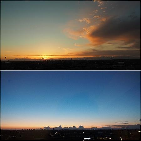 P5200397_Fotor_Collage.jpg