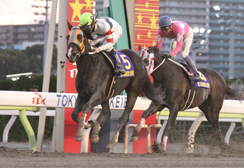 【競馬】どの冠名もタルマエを付けると途端にダサくなる件