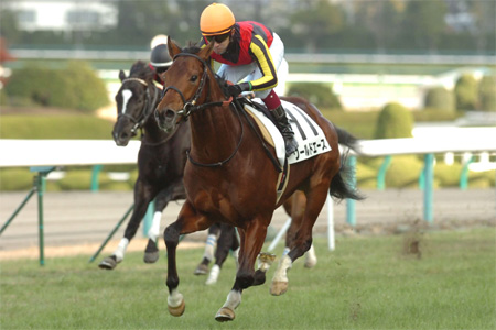 【競馬】ワールドエースとトゥザワールド 現地騎手が騎乗へ