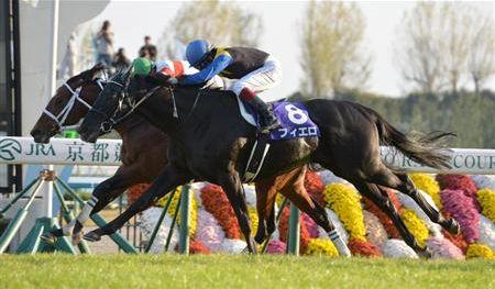 【競馬】ハナ差で運命が変わってしまった馬といえば