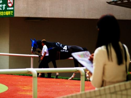 【競馬】人気順に評価するパドック解説者