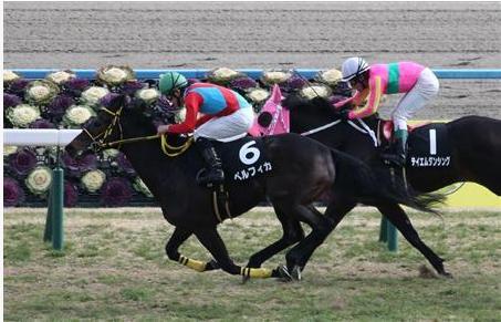 【競馬】Cデムーロがここまで優遇されるのは流石に納得いかんわ