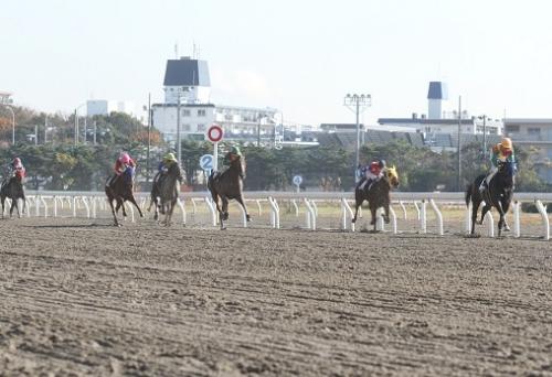 【競馬】折り合い選手権ばかりになる原因
