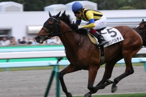 【競馬】ガリバルディが福永を降ろした途端に1000万下を快勝