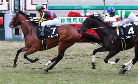 【競馬】案の定ハービンジャーがゴミ種牡馬だった件