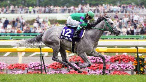 【競馬】今すぐに引退勧告したい馬を挙げるスレ