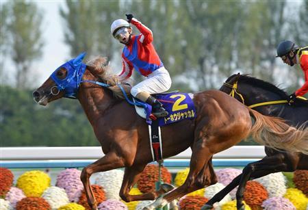 【競馬】菊花賞馬が3頭現役なのに、3頭とも天皇賞春回避って