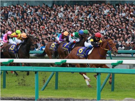 【競馬】岩田と池添で決まるG1