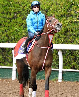 【競馬】ついに福永が皐月賞を勝つわけなんだが【リアルスティール】