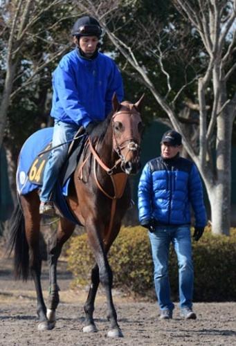 【競馬】堀厩舎の馬はなぜここまで強いのか?