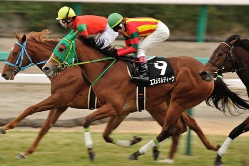 【競馬】エスメラルディーナ、JRA初の韓国遠征へ