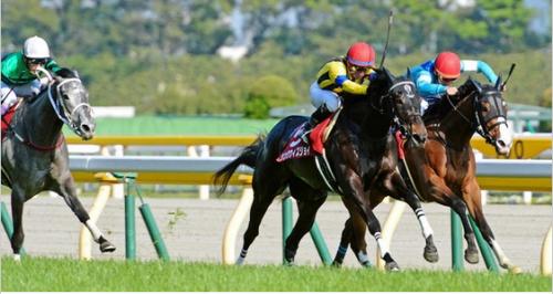 【競馬】武豊さんにもっといい馬を……