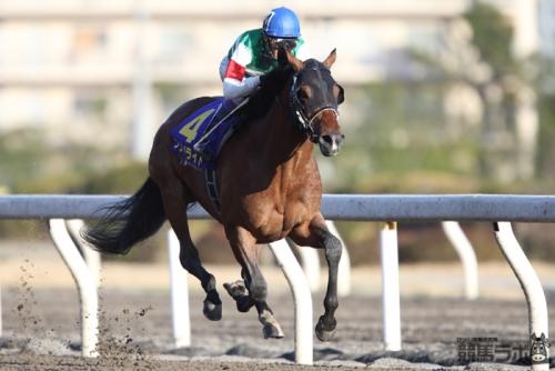 【競馬】武豊は先行馬中心に乗った方が良いのでは