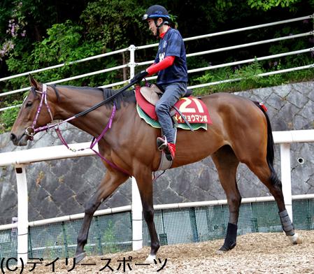 【競馬】《ヴィクトリアマイル》メイショウマンボ復活の可能性
