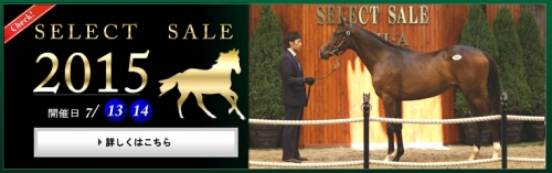 【競馬】《セレクトセール2015》 ―上場馬情報―