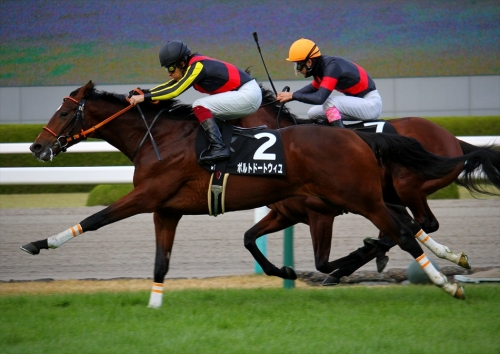 【競馬】武豊、芝GⅠでは1年半も馬券に絡めず