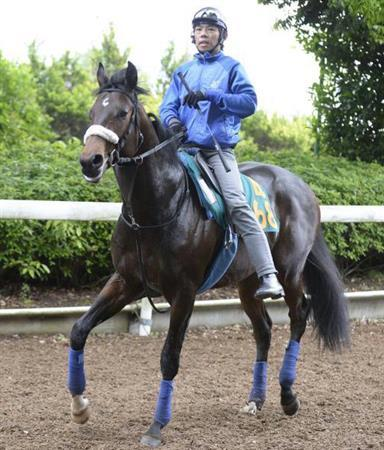 【競馬】プロディガルサンが兄以上の化け物と絶賛されてる件