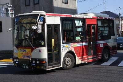 DSC_0391-m.jpg