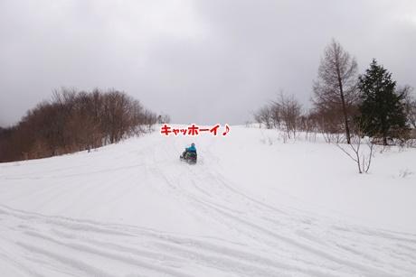 DSC07875.jpg