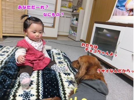DSCF2338.jpg