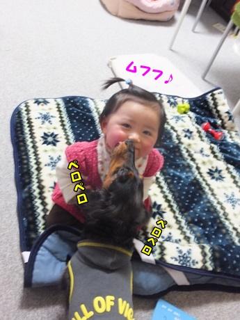 DSCF2436.jpg