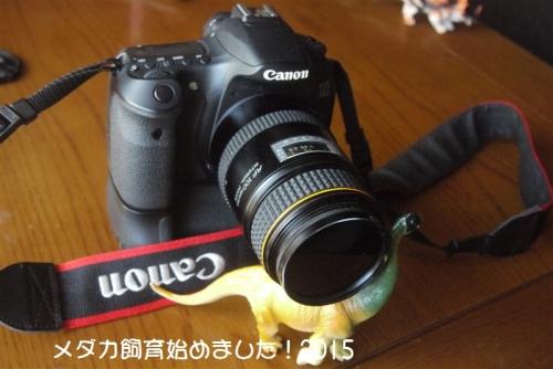 P1100458.jpg