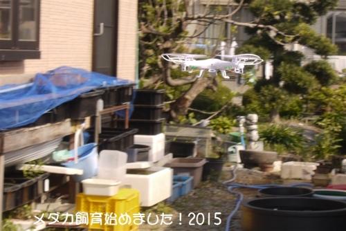 P1100998_201504250833203e7.jpg
