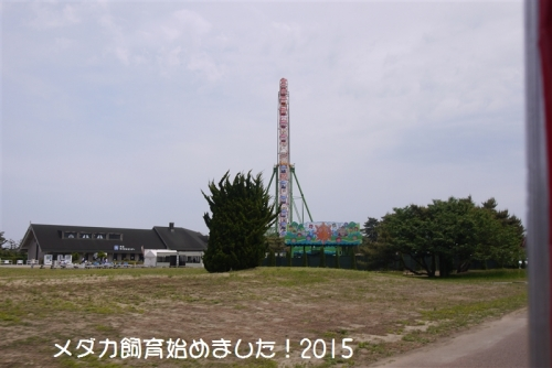 P1110096.jpg