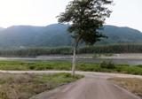 散歩道 吉野川(右)
