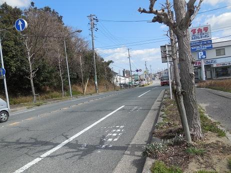 DSCN2251rairai.jpg