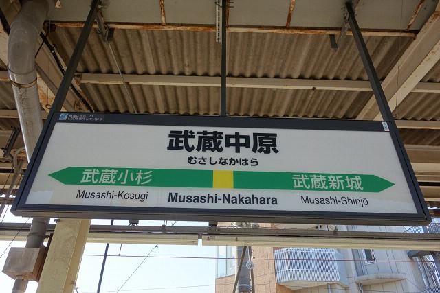 musasinakahara20140650.jpg