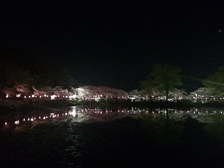 桜祭り茂原公園2015その1