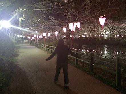 桜祭り茂原公園2015その8