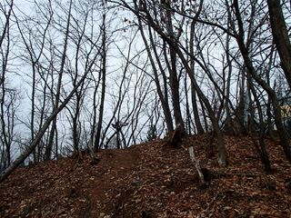 150101-112215-1.1甲州高尾山~棚横手山 007_R