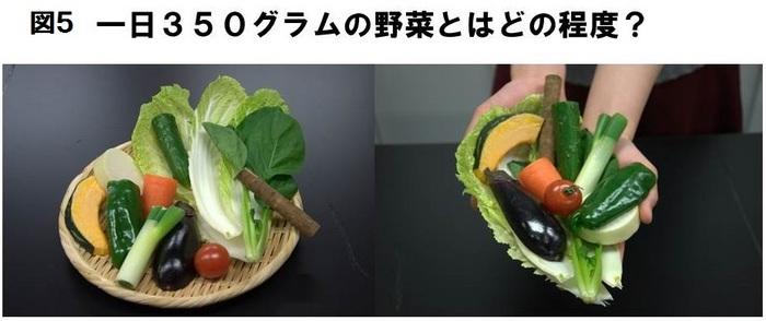 図5野菜の量-thumb-700x294-1266