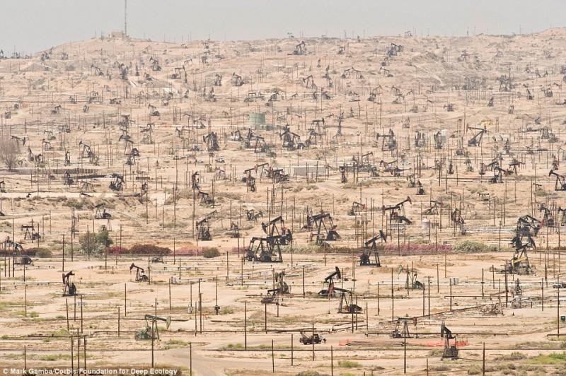 カリフォルニア油田