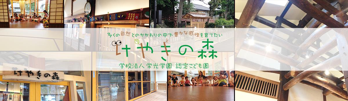 古民家保育園【けやきの森】ブログ