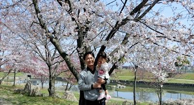 せせらぎ川の桜