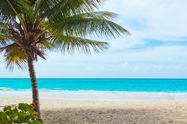 beach-84561_640.jpg