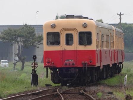 DSC08958.jpg