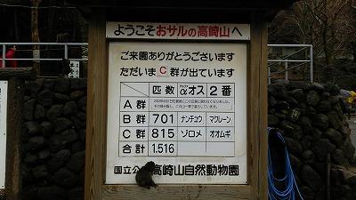 高崎山10