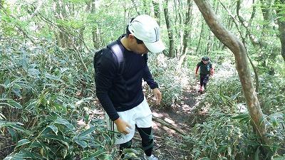 14井原山