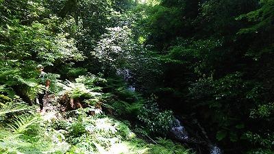 77井原山