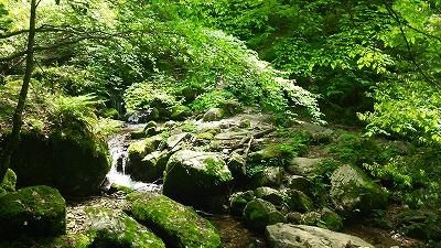 79井原山